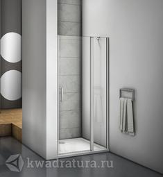 Душевая дверь Bas Мокка WTW-C-WE 110